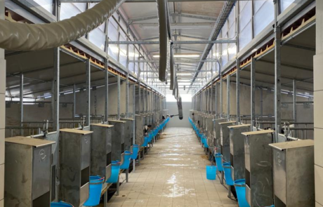 Agrisystem srl calf rail realizzazione