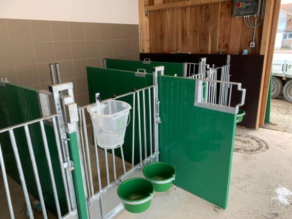 Calf-pens box vitelli da interno