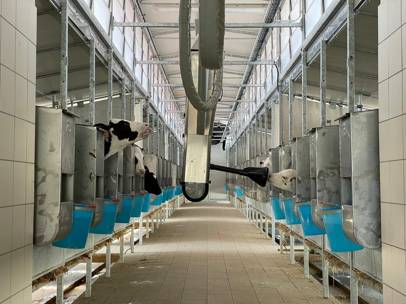 Calf Rail agrisystem srl